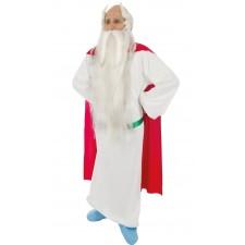 Costume de Panoramix adulte sous licence officielle Astérix et Obélix